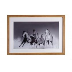 """Gerahmtes Pferdefoto """"Trio"""""""